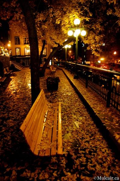 Autumn Rest Stop