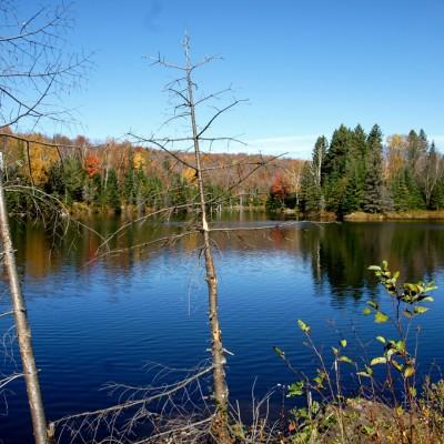 lake-blues